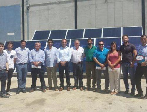 El garbanzo de Escacena «se engancha» a la energía solar