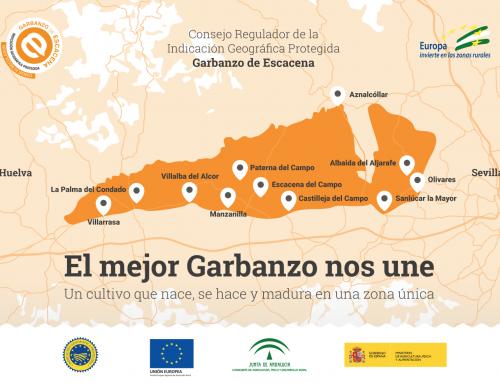 La IGP Garbanzo de Escacena vuelve a respaldar a la Ruta BTT Villa de Paterna